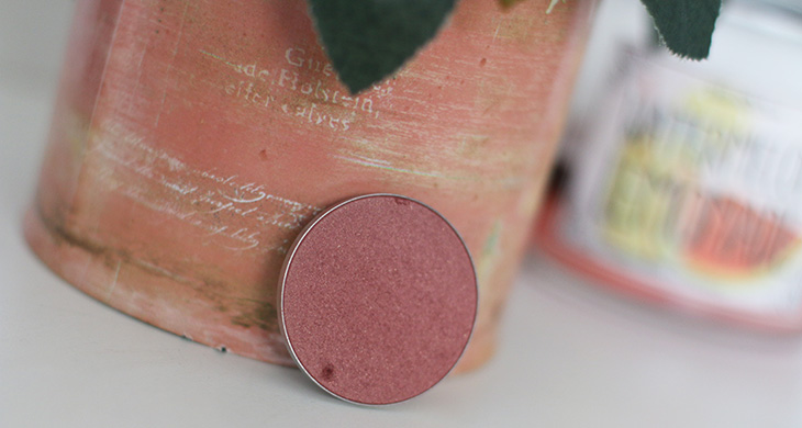 blush-plum-foolery-mac-claudinha-stoco-1